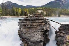 Howling Athabasca Falls Royalty Free Stock Image