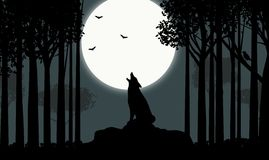 Howling at the Moon Royalty Free Stock Photography