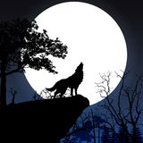 Howling to the full moon Royalty Free Stock Image