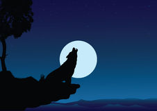 Howling wolf. A vector wolf on peak Royalty Free Stock Photography