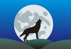 Howling wolf Stock Photography