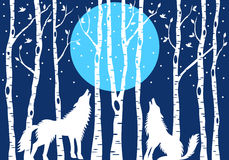 Howling wolf with birch trees, vector Royalty Free Stock Photo