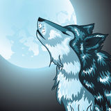Howling Wolf Head. Stylized cartoon gray wolf head, howling wolf Royalty Free Stock Images
