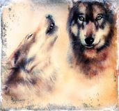 Howling Wolfs airbrush painting on canvas color background eye contact. Howling Wolfs airbrush painting on canvas color background Stock Photo