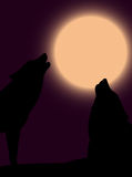 Howling wolves. Two howling wolves over moon Stock Photo