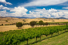 Howqua Valley View Royalty Free Stock Image