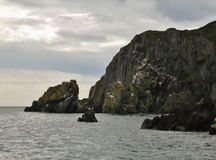 Howth半岛的峭壁 免版税图库摄影