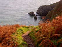 Howth Cliffs. Ireland. Stock Photos