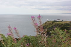 Howth - Irland Royaltyfri Fotografi