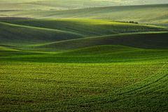 Hoy en Moravia Fotografía de archivo