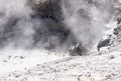 Hoyo de batido del fango en el parque nacional de Yellowstone imagenes de archivo