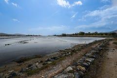 Hoyo y área de sal para la reproducción natural segura de los pescados Fotografía de archivo