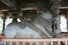 Hoysaleshwara寺庙整体第6个最大的楠迪雕塑在印度 库存图片