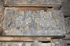 Hoysaleswara Temple Wall carving of yali yazhi mythical animal. This is a Wall carving of yali yazhi mythical animal  This carving is in Hoysaleshwara temple is Stock Images