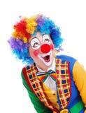 häpen clown Royaltyfri Fotografi