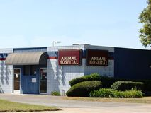 Hôpital animal Photo stock