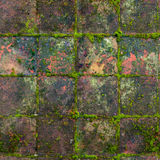 HQ seamless, tileable texture old medieval mossy outdoor tiles. Royalty Free Stock Images