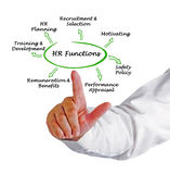 HR Functions. Presenting diagram of HR Functions Royalty Free Stock Photos