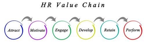 HR Value Chain. Diagram of HR Value Chain stock illustration