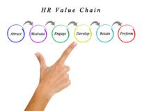 HR Value Chain. Presenting important components of HR Value Chain royalty free stock photos