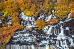 hraunfossar iceland vattenfall Höst fotografering för bildbyråer