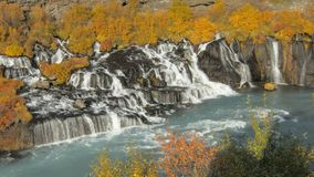 Hraunfossar is a series of waterfalls formed by rivulets streaming over a long distance in Iceland. In autumn daytime, in sunny weather stock footage