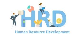 HRD, desarrollo de recursos humanos Concepto con palabras claves, letras e iconos Ejemplo plano del vector Aislado en blanco stock de ilustración
