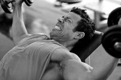Hård utbildning för kroppsbyggare i idrottshallen Arkivfoton
