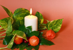 Hristmas decoration with holly leaves and berries Stock Photos