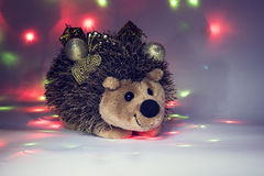 Сhristmas hedgehog. Holiday background:hedgehog  with presents and decoration elements Royalty Free Stock Image