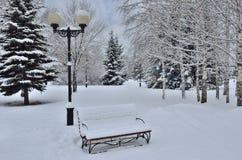 Сhristmas tree, bench and lantern Stock Photos