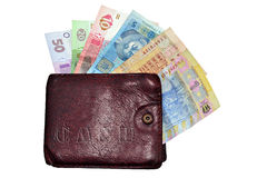 Hrivna cash and wallet Stock Photos