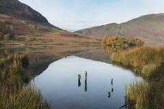 Härlig Autumn Fall landskapbild av Crummock vatten på sunrien Arkivbild