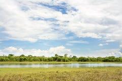 Härlig dag på den Lifupa fördämningen, Kasungu Arkivfoton