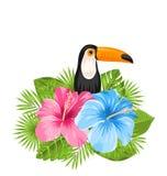 Härlig exotisk naturbakgrund med tukanfågeln, färgrika hibiskusblommor Arkivfoton