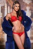Härlig förförisk ung kvinna i röd sexig damunderkläder och elegant lyxigt pälslag Royaltyfri Bild