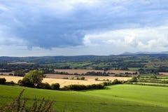 Härlig frodig irländsk jordbruksmark Arkivfoto