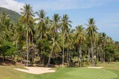 Härlig golfbana och palmträd Ö Koh Samui, Thailand Royaltyfria Foton