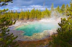 Yellowstone nationalpark, Wyoming Arkivbilder