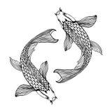 Härlig illustration för koikarpfisk i monokrom Symbol av förälskelse, kamratskap och välstånd Royaltyfri Foto