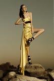 Härlig kvinna i aftonklänning Fotografering för Bildbyråer
