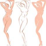 härlig silhouettekvinna Royaltyfria Bilder