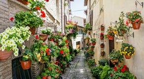 Härlig Spello by, Umbria, Italien Arkivbild