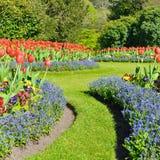 härlig trädgård Royaltyfria Foton