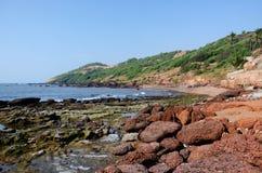 Härlig tropisk strand i Anjuna, Goa, Indien Royaltyfri Bild