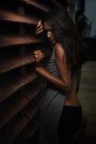 Härlig ung kvinna på brun bakgrund Royaltyfria Bilder