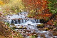 Härlig vattenfall i skogen, höstlandskap Royaltyfri Bild