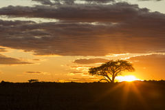 Härlig vibrerande färgglad soluppgång Royaltyfria Bilder