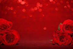 härliga röda ro Fotografering för Bildbyråer