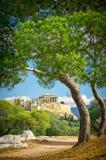 Härligt beskåda av forntida Acropolis Arkivfoton